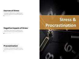 Stress And Procrastination Ppt Slides Example File