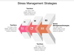 Stress Management Strategies Ppt Powerpoint Presentation Gallery Design Templates Cpb