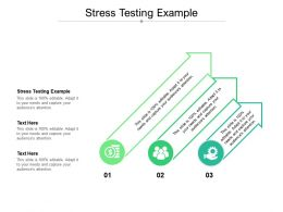 Stress Testing Example Ppt Powerpoint Presentation Infographics Vector Cpb