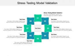 Stress Testing Model Validation Ppt Infographic Template Microsoft Cpb