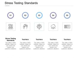Stress Testing Standards Ppt Powerpoint Presentation Layouts Deck Cpb