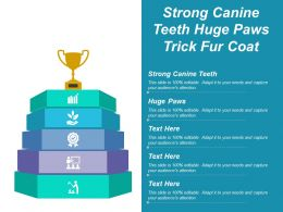 strong_canine_teeth_huge_paws_trick_fur_coat_Slide01