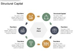 Structural Capital Ppt Powerpoint Presentation Icon Designs Download Cpb