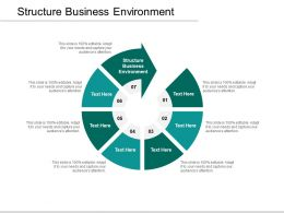 Structure Business Environment Ppt Powerpoint Presentation Pictures Graphics Download Cpb