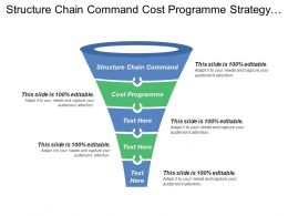 Structure Chain Command Cost Programme Strategy Implementation Strategy Implementation