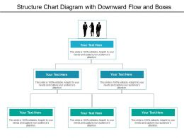 Structure Chart Diagram With Downward Flow And Boxes