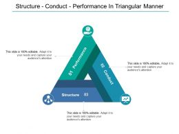 Structure Conduct Performance In Triangular Manner