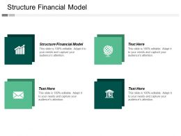 Structure Financial Model Ppt Powerpoint Presentation Icon Example File Cpb