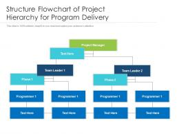 Structure Flowchart Of Project Hierarchy For Program Delivery