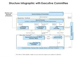 Structure Infographic With Executive Committee
