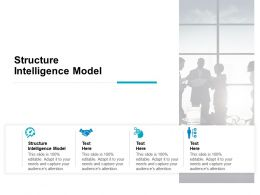 Structure Intelligence Model Ppt Powerpoint Presentation Styles Guide Cpb