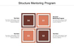 Structure Mentoring Program Ppt Powerpoint Presentation Model Microsoft Cpb