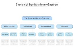 Structure Of Brand Architecture Spectrum