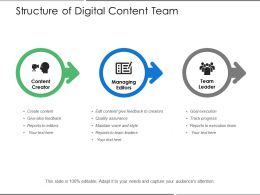 Structure Of Digital Content Team
