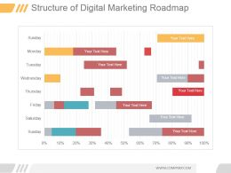 Structure Of Digital Marketing Roadmap Ppt Infographics