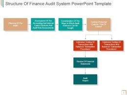 Structure Of Finance Audit System Powerpoint Template