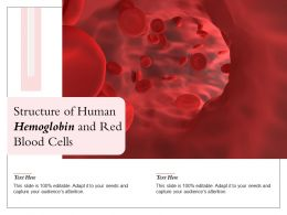 Structure Of Human Hemoglobin And Red Blood Cells