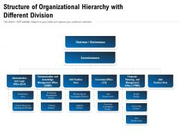 Structure Of Organizational Hierarchy With Different Division