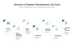 Structure Of System Development Life Cycle