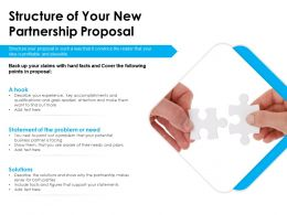 Structure Of Your New Partnership Proposal