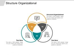 Structure Organizational Ppt Powerpoint Presentation Gallery Guide Cpb