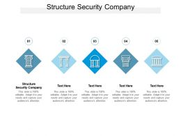 Structure Security Company Ppt Powerpoint Presentation Inspiration Introduction Cpb