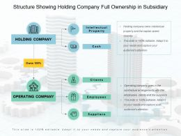 Structure Showing Holding Company Full Ownership In Subsidiary