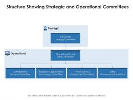 Structure Showing Strategic And Operational Committees