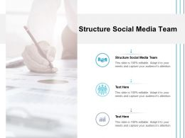 Structure Social Media Team Ppt Powerpoint Presentation Gallery File Formats Cpb