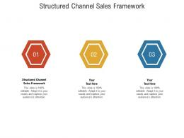 Structured Channel Sales Framework Ppt Powerpoint Presentation Professional Elements Cpb