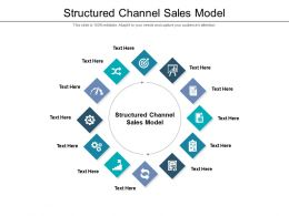 Structured Channel Sales Model Ppt Powerpoint Presentation Professional Cpb
