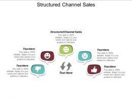 Structured Channel Sales Ppt Powerpoint Presentation Gallery Slide Portrait Cpb