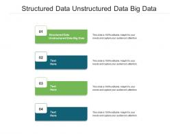 Structured Data Unstructured Data Big Data Ppt Powerpoint Presentation File Background Image Cpb