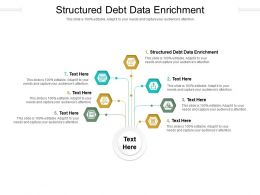 Structured Debt Data Enrichment Ppt Powerpoint Presentation Professional Portrait Cpb