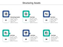 Structuring Assets Ppt Powerpoint Presentation Outline Clipart Cpb