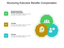 Structuring Executive Benefits Compensation Ppt Powerpoint Presentation Icon Format Ideas Cpb
