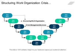 Structuring Work Organization Crisis Management Business Organization Changes Cpb