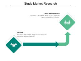Study Market Research Ppt Powerpoint Presentation Slides Rules Cpb