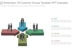 Subdivision Of Customer Groups Template Ppt Examples