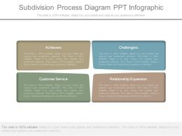 Subdivision Process Diagram Ppt Infographic