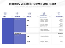 Subsidiary Companies Monthly Sales Report