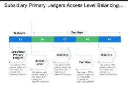 Subsidiary Primary Ledgers Access Level Balancing Segments Value