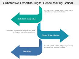 Substantive Expertise Digital Sense Making Critical Digital Workforce