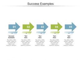 Success Examples Ppt Powerpoint Presentation Portfolio Structure Cpb