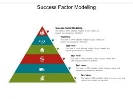Success Factor Modelling Ppt Powerpoint Presentation Portfolio Maker Cpb