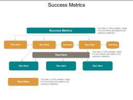 Success Metrics Ppt Powerpoint Presentation Inspiration Slides Cpb
