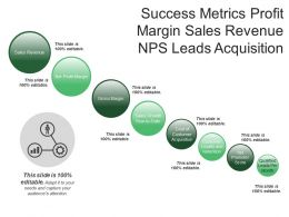 Success Metrics Profit Margin Sales Revenue Nps Leads Acquisition