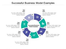 Successful Business Model Examples Ppt Powerpoint Presentation Model Cpb