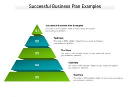 Successful Business Plan Examples Ppt Powerpoint Presentation Icon Format Ideas Cpb