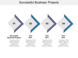 Successful Business Projects Ppt Powerpoint Presentation Slides Portrait Cpb